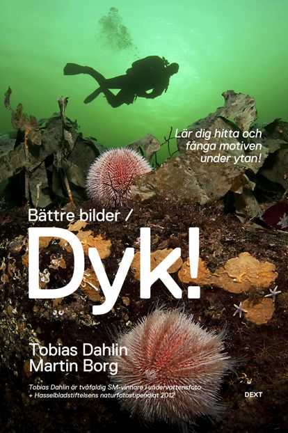 http://www.dykarna.nu/photos/2012/499420121215224632.jpg